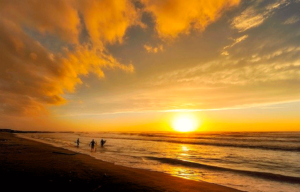 About Sunshine Coast and the surf report
